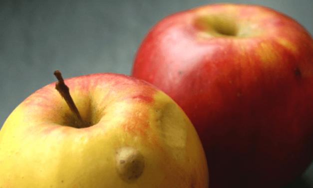 Äpfel und ihre Ökobilanz