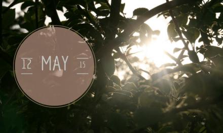 12 von 12 im Mai 2015