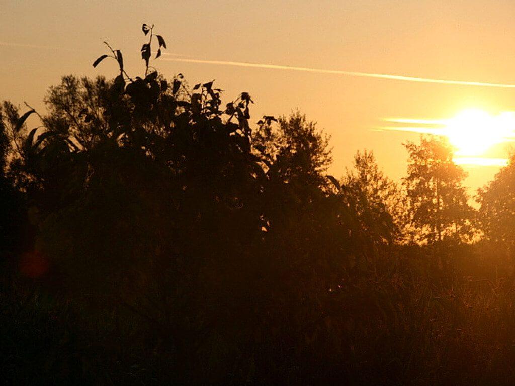 Die Aussicht um halb sechs am nächsten Morgen: Sonnenaufgang hinter dem Zelt.