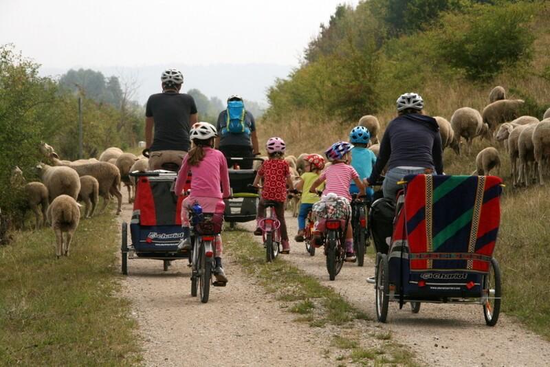 Mein Lieblingsbild: Alle Mitreisenden im Blick. Hier inmitten einer Schafherde