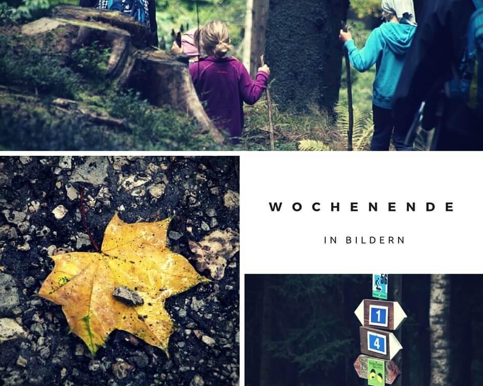 Wandern mit Kindern im Bayerischen Wald