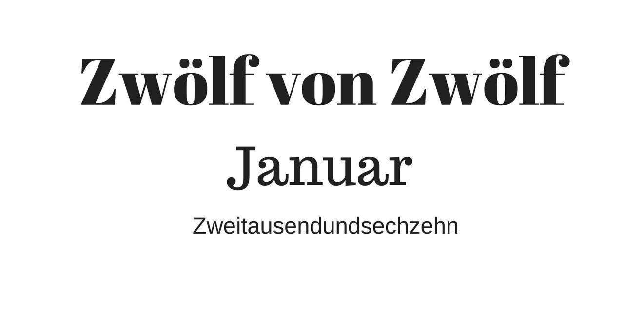 Zwölf von Zwölf: Januar Zweitausendundsechszehn