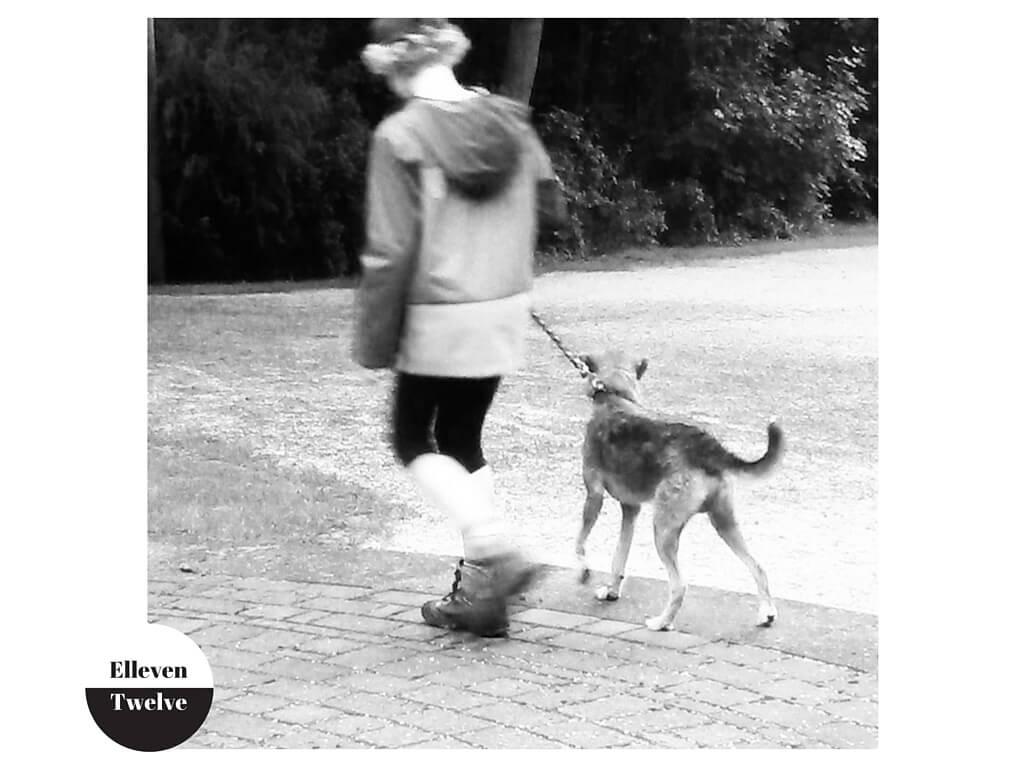 Kind führt Hund an der Leine
