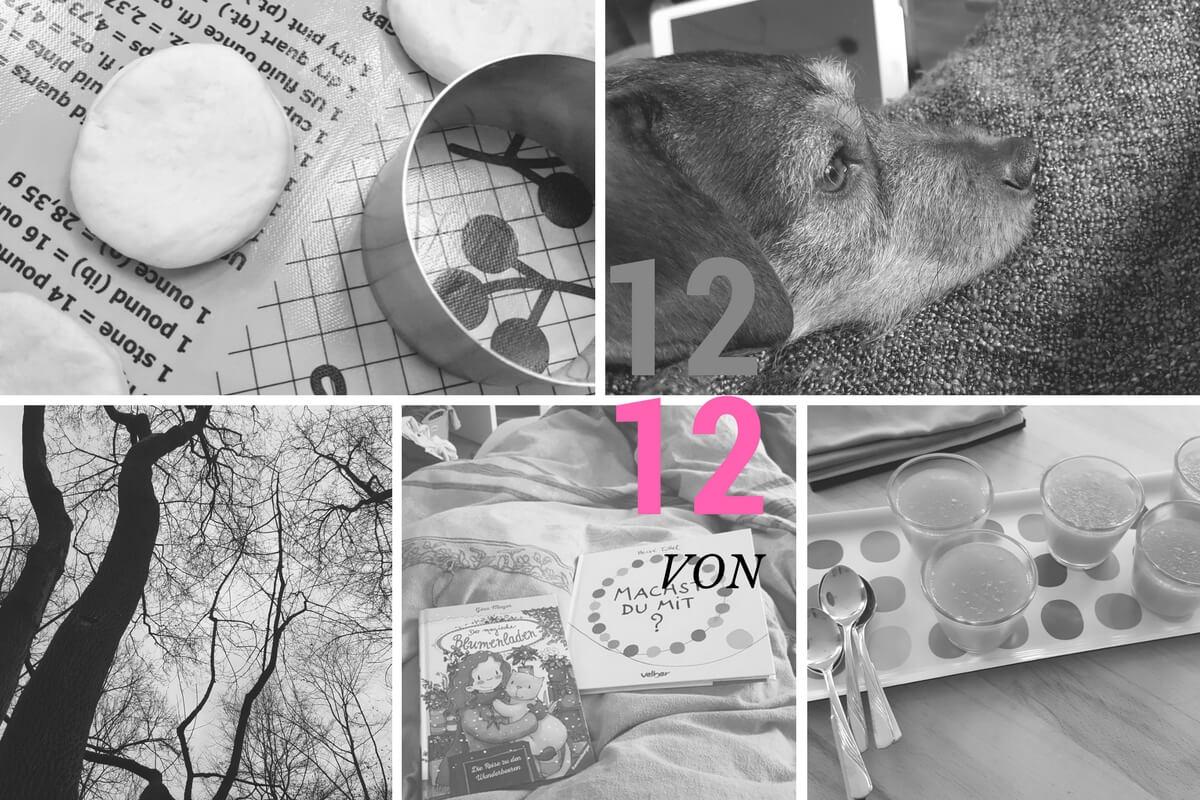 12 Bilder im Februar 2017