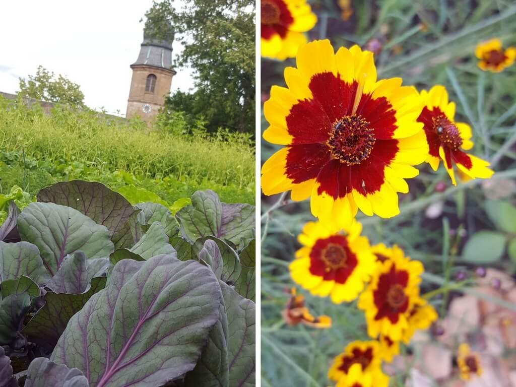 Burggarten der cadolzburg