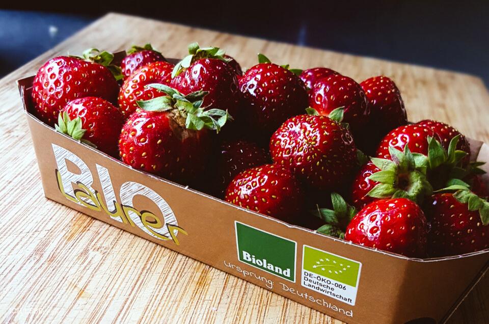 Schale mit Erdbeeren mit Bioland Logo