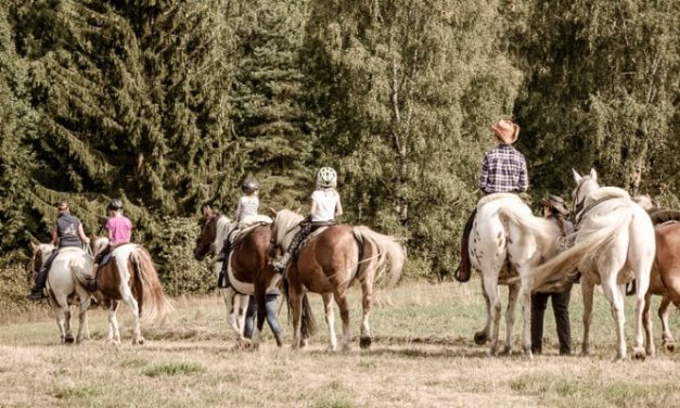 Bio Erlebnistage – Der berittene Cowboydienstag
