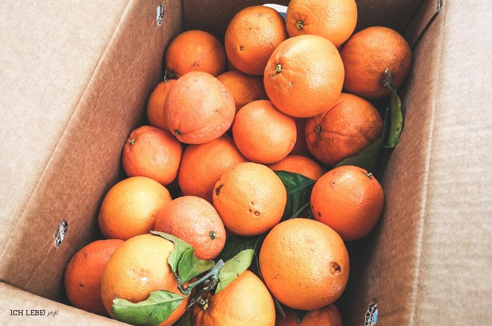 Orangen aus Valecia