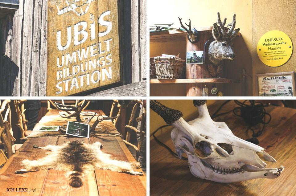 UBiS-Umweltbildungsstation