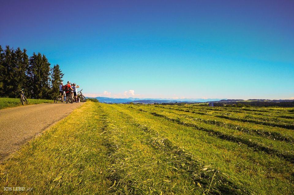Radfahrer mitten in der Allgäuer Landschaft