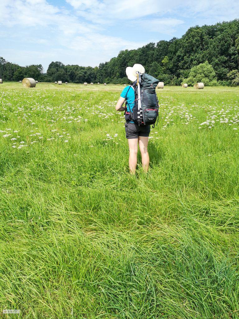 Auf dem Weg zu Fuß von Berlin nach Wien in einem Feld